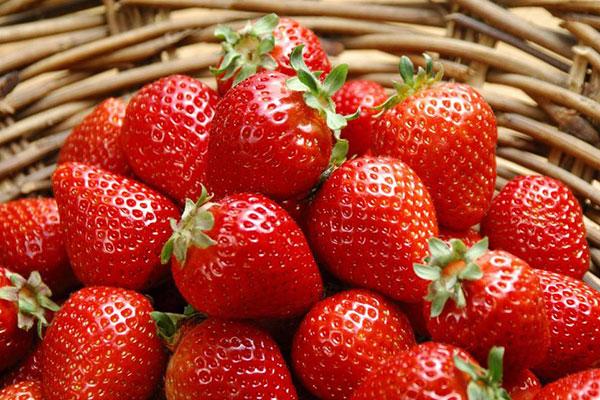 含钙高的食物和水果